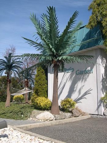 14′ King Palms