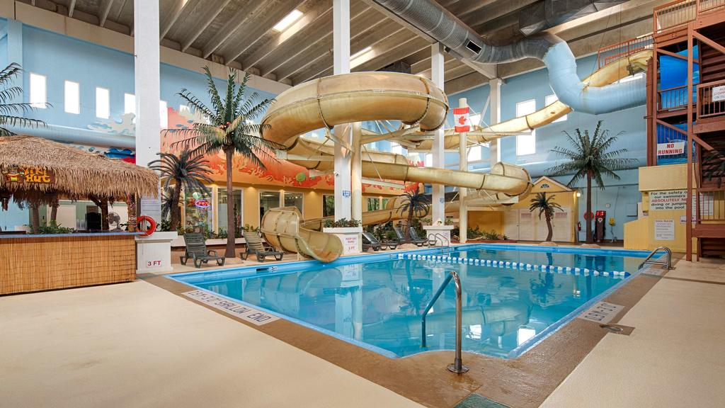 <p>19' King Palms<br>Indoor Aquatic Centers use a tropical theme for their guests to enjoy.</p>