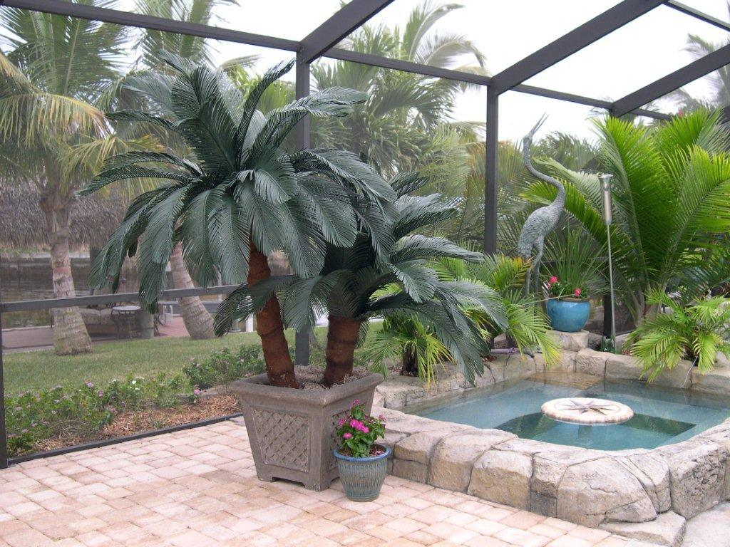 <p>Sago Palms  <br>Our Sago Palms will look great next to your pool or spa. Sold individually or save and buy the pair</p><p>Planter Not Included</p>