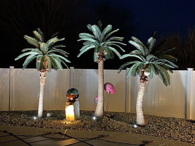 <p>Tropical Expressions Queen Palm Trees will turn your backyard into a resort. Don't forget to up light your palms<br>Left to right: 9' Queen w/straight trunk, 11' Queen Palm, 9' Curved Queen Palm</p><p> </p>