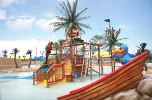 <p>Tropical Expressions manufactured palms are used to theme many parks.</p><p>No matter what the climate, our palms will make you feel like you are in paradise</p>