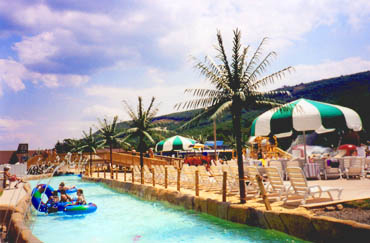 <p>Tropical Expressions Palms are used to theme this lazy river at Camel Beach Water Park</p>